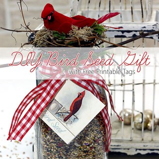 Homemade Gift for Bird Lovers – Tutorial – So Lovely!