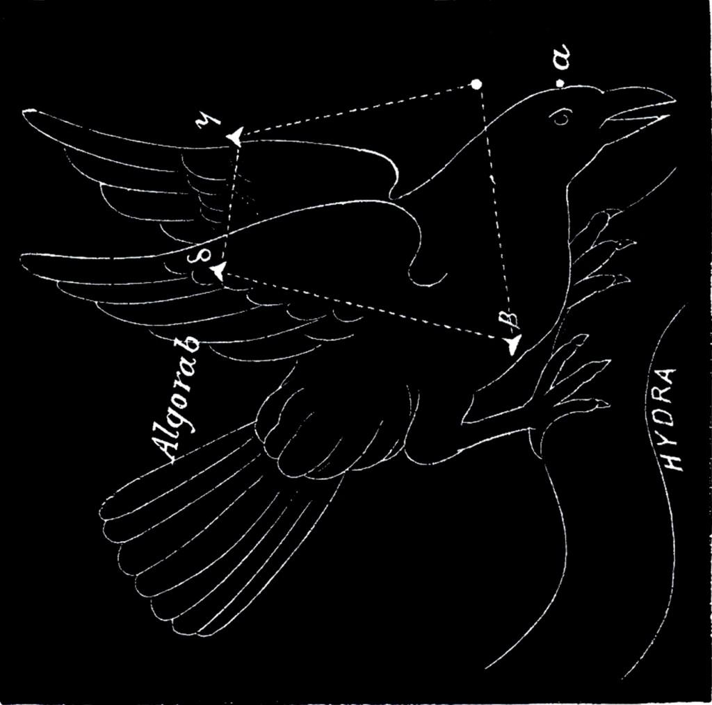 Vintage Astronomy Corvus Image