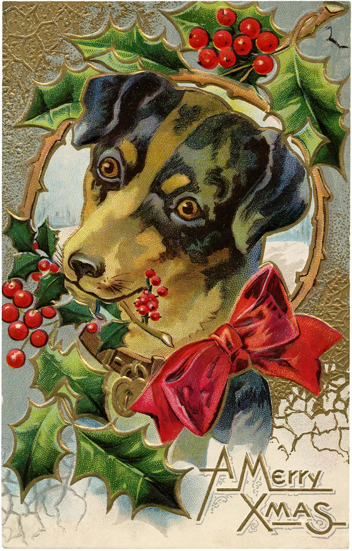 Vintage Christmas Dog Freebie - Cute! - The Graphics Fairy