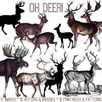 Oh Deer Kit