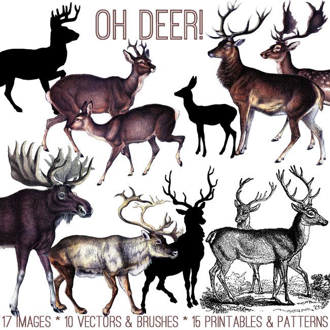 Oh Deer Bundle