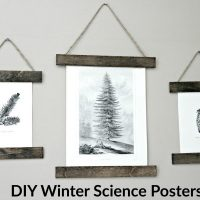 winter-science-posters