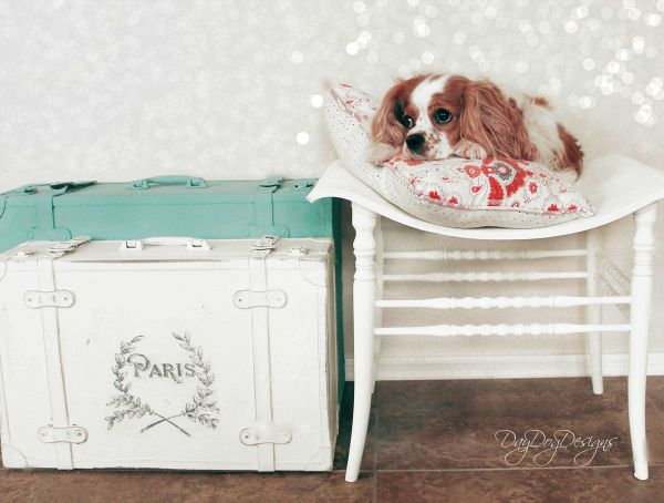 15 - Day Dog Designs - Handpainted Luggage Set