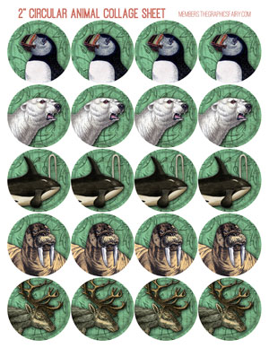 2_inch_polar_collage_mint_graphicsfairy