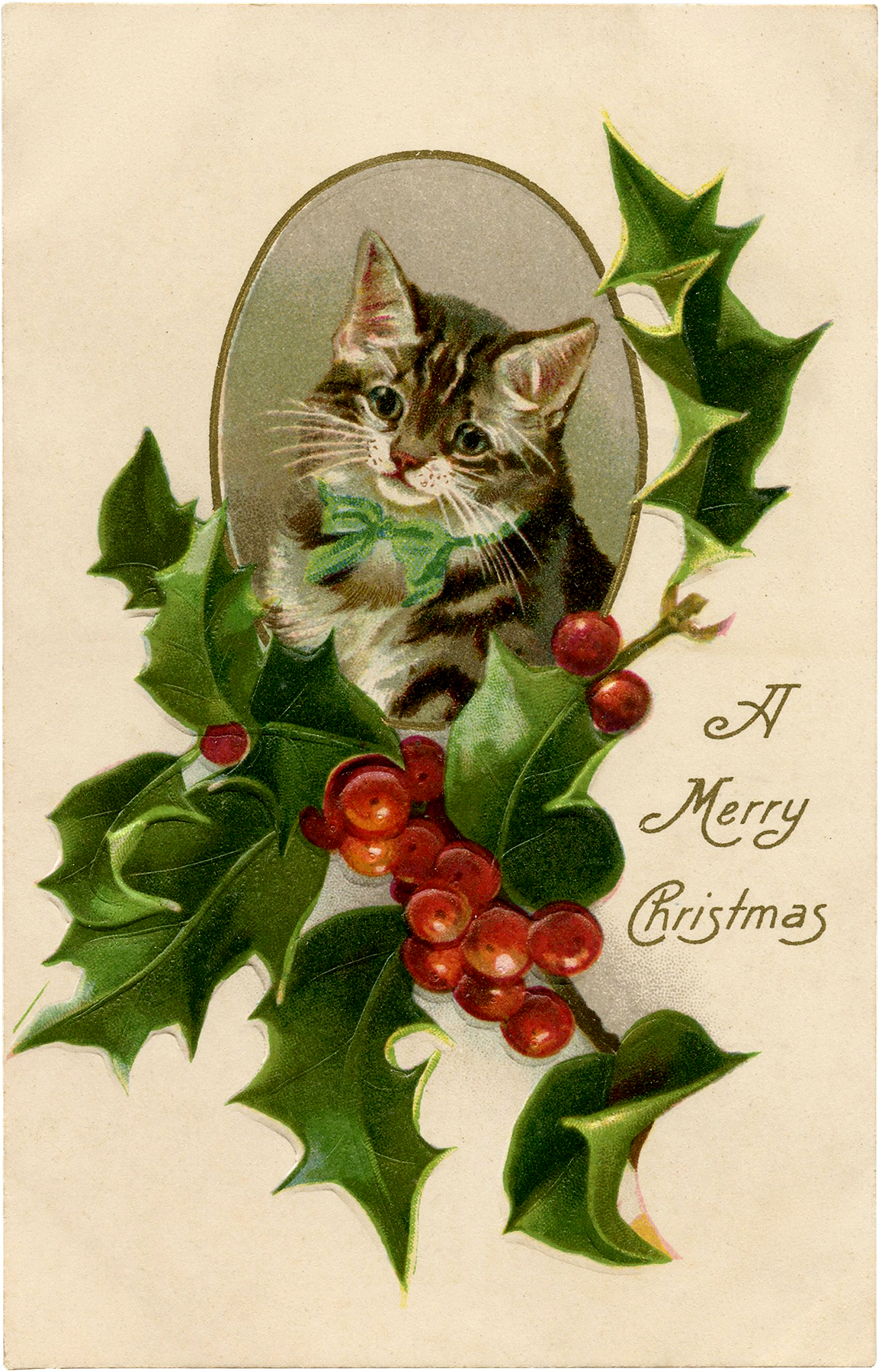 Christmas Holly Cat Image
