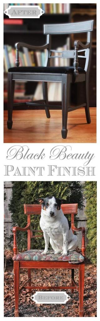 Classic Black Beauty Paint Finish