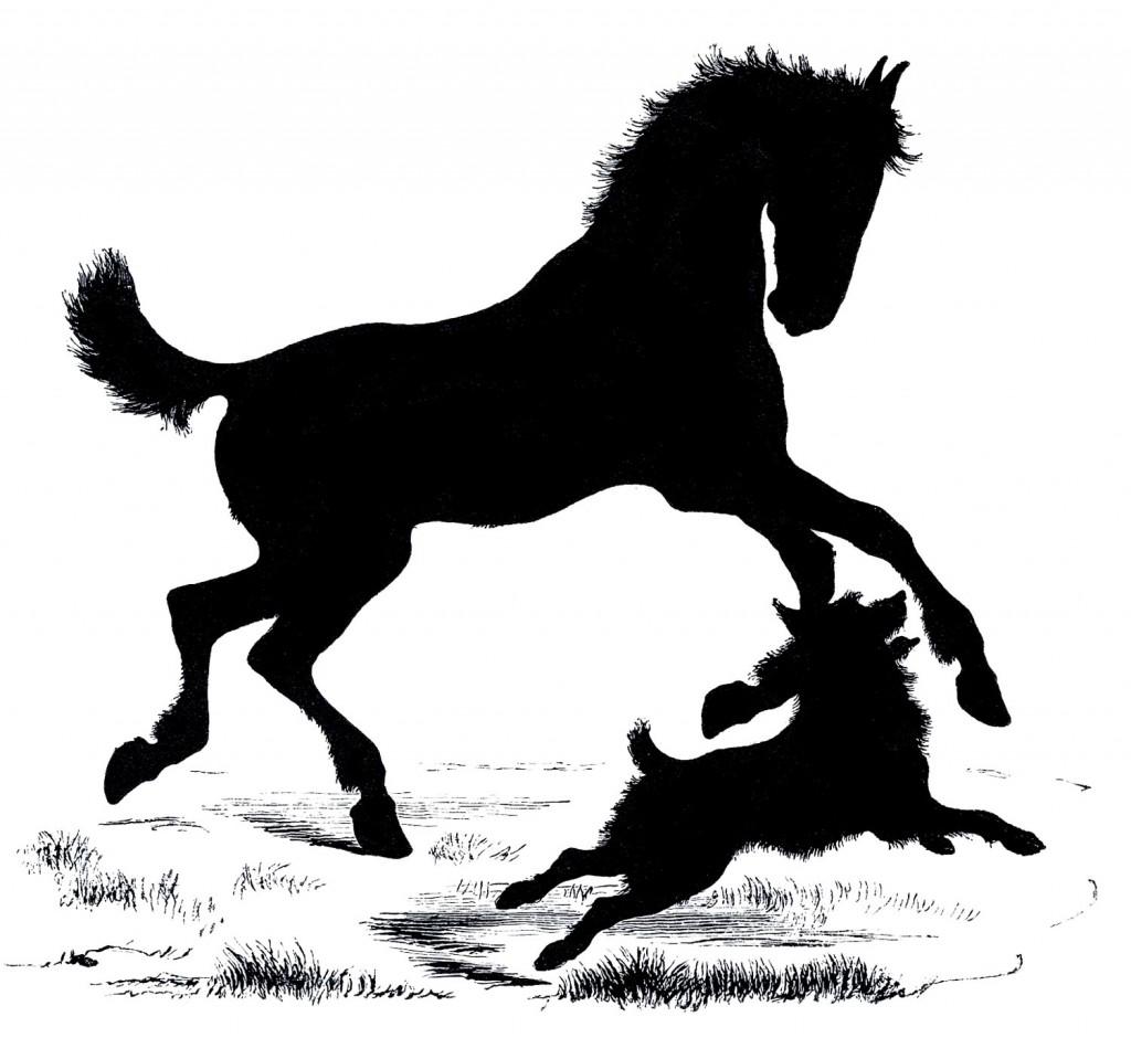 Horse Silhouette Farm Animal Image