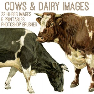 Diary and Cow Images Kit