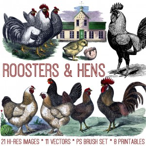 Roosters and Hens Kit