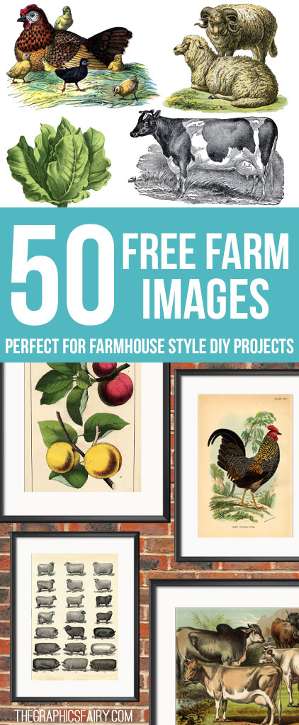 50 Free Farm Images For Farmhouse Style Diy Projects