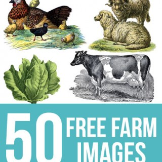 50 Free Farm Images for Farmhouse Style DIY Projects!