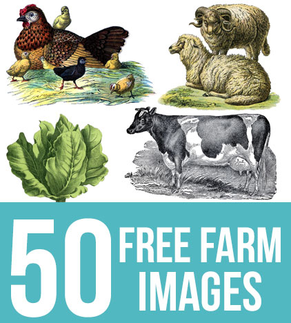 50 Free Farm Images for Farmhouse Style DIY Projects! - The Graphics