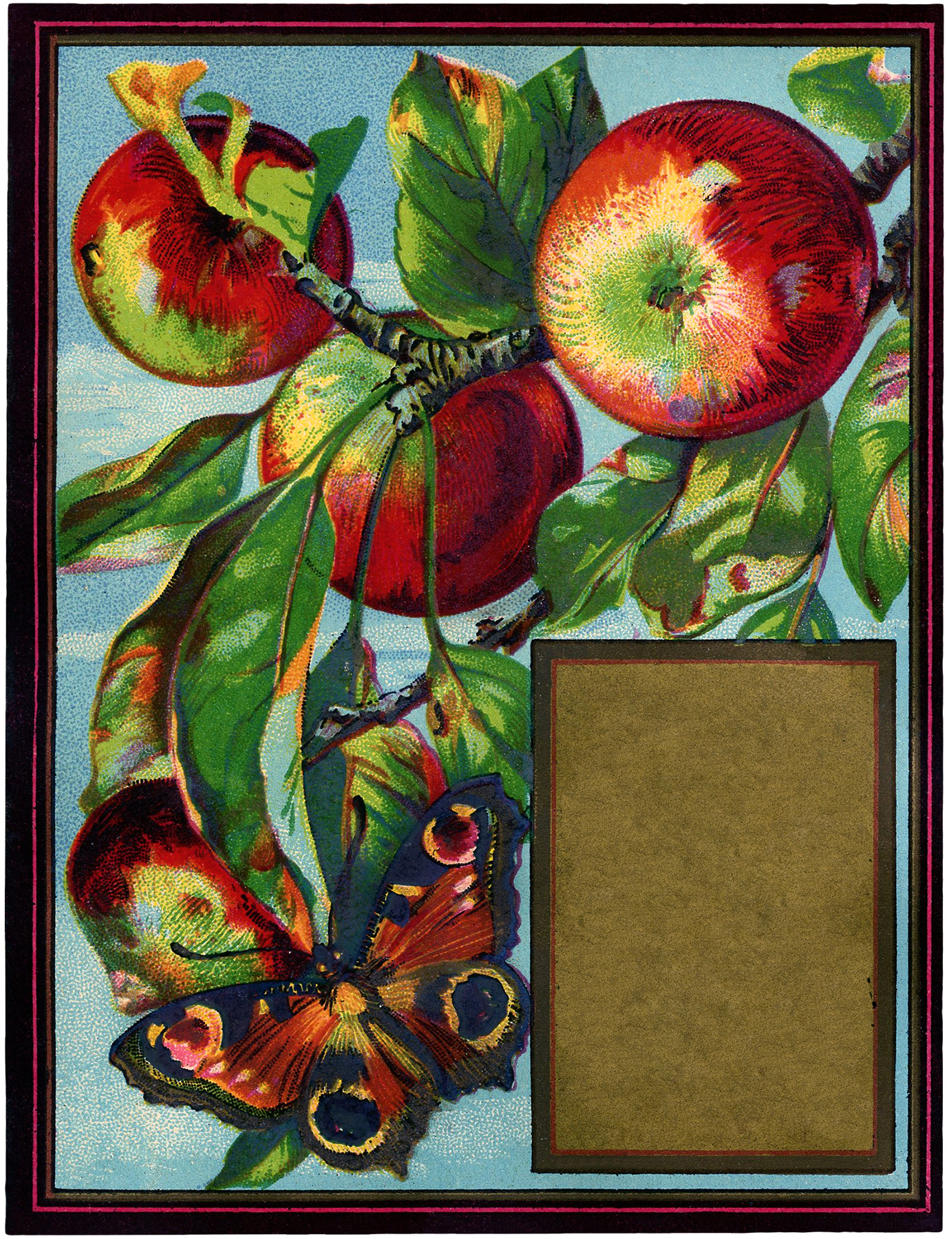 Vintage Apples with Butterfly Image