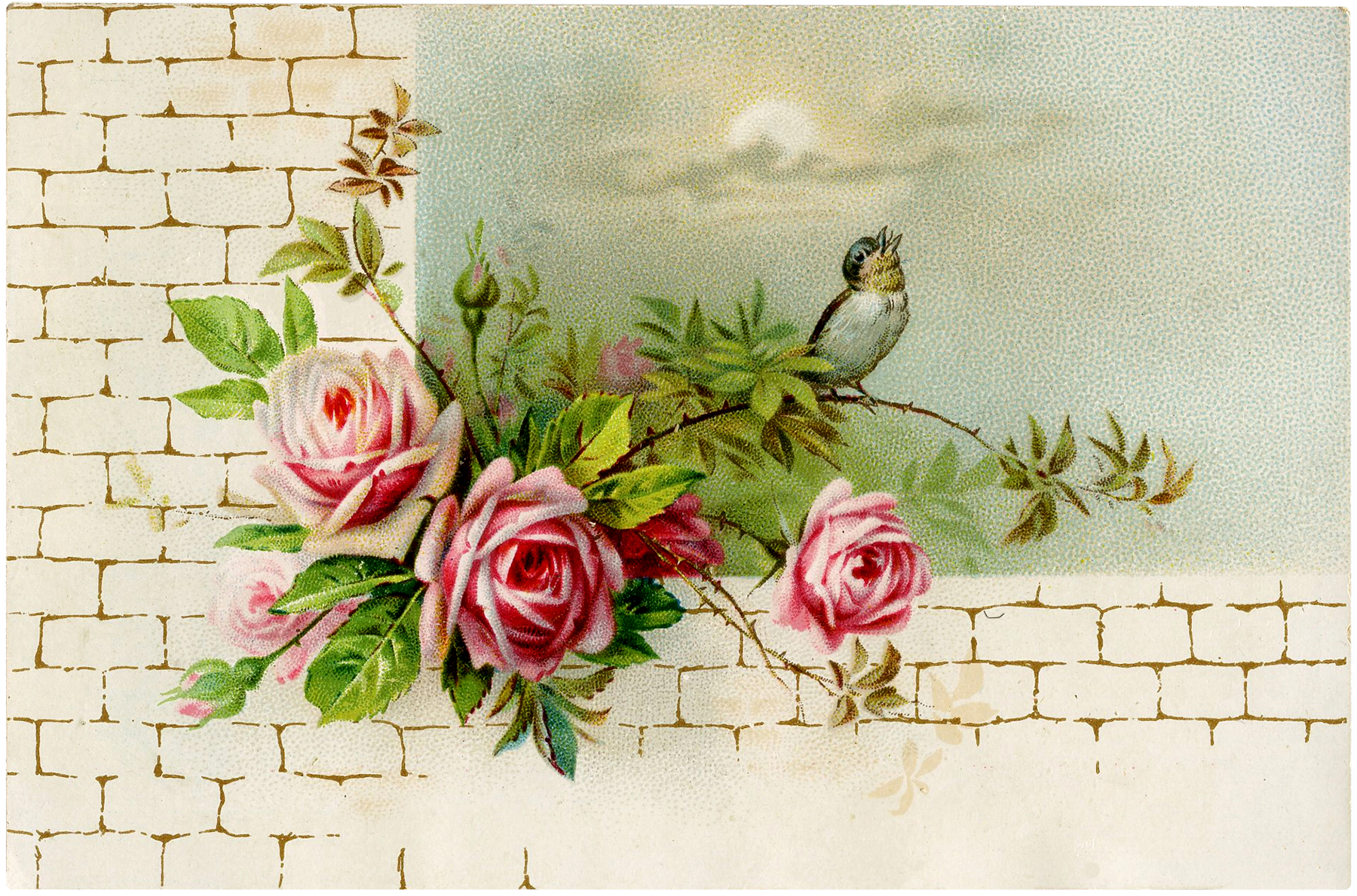 Vintage Roses on Wall Image