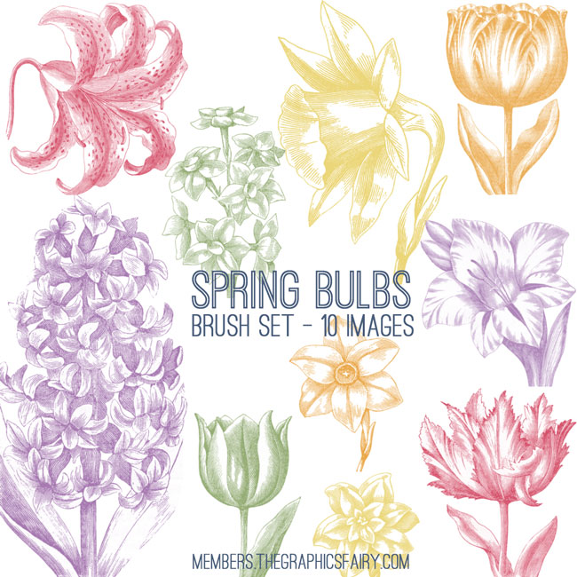 spring_bulbs_brushes_graphicsfairy