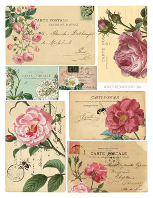 rose_postcards_graphicsfairy