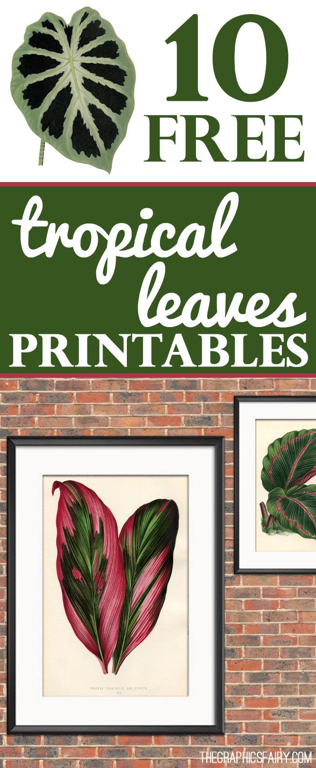 10 Free Tropical Leaves Printables