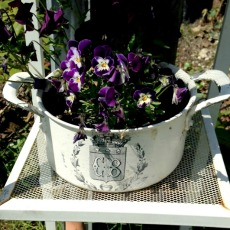 Upcycled Flower Pot – Reader Feature
