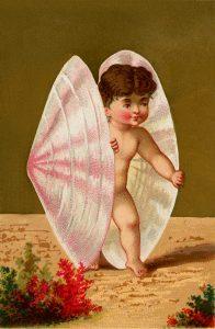Vintage Seashell Baby Image