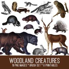 Woodland-Creatures-Image-Kit-thm-GraphicsFairy
