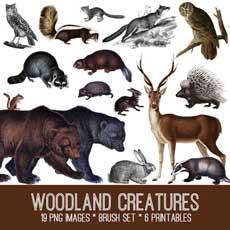 Woodland Creatures Image Kit! TGF Premium
