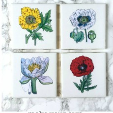 DIY Botanical Coasters – Reader Feature