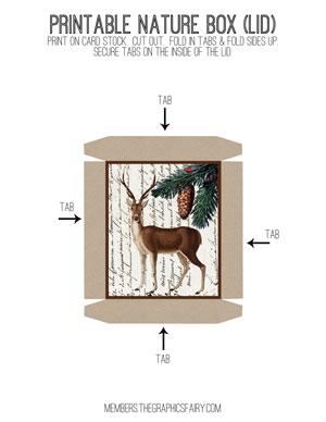 nature_box_lid_deer_graphicsfairy