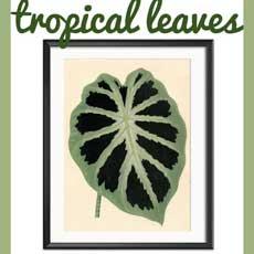 10 Free Tropical Leaves Printables – Instant Art Botanicals!