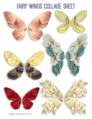 fairy_wings_collage_sheet_2_graphicsfairy