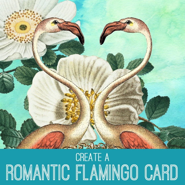 tutorial-650x650_flamingo_card_graphicsfairy