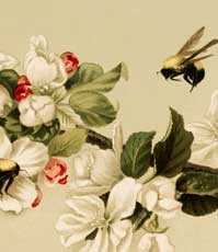 Stunning Vintage Bees & Blossoms Image!