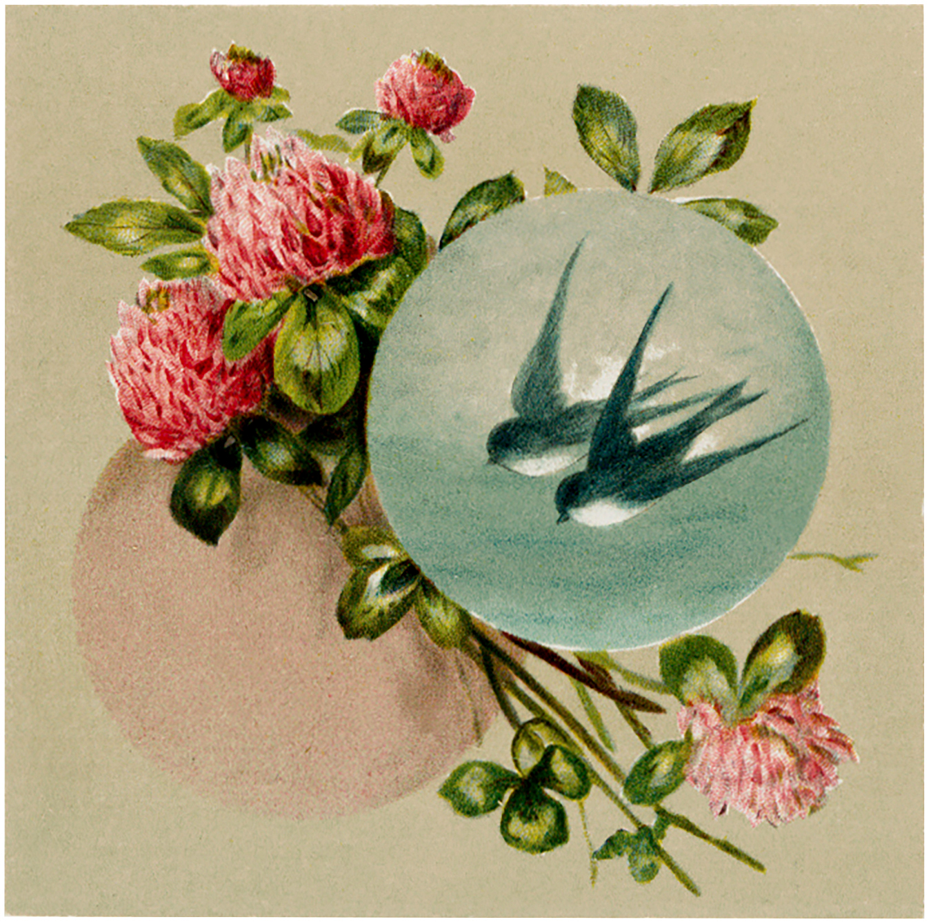 Vintage Birds and Clover Image