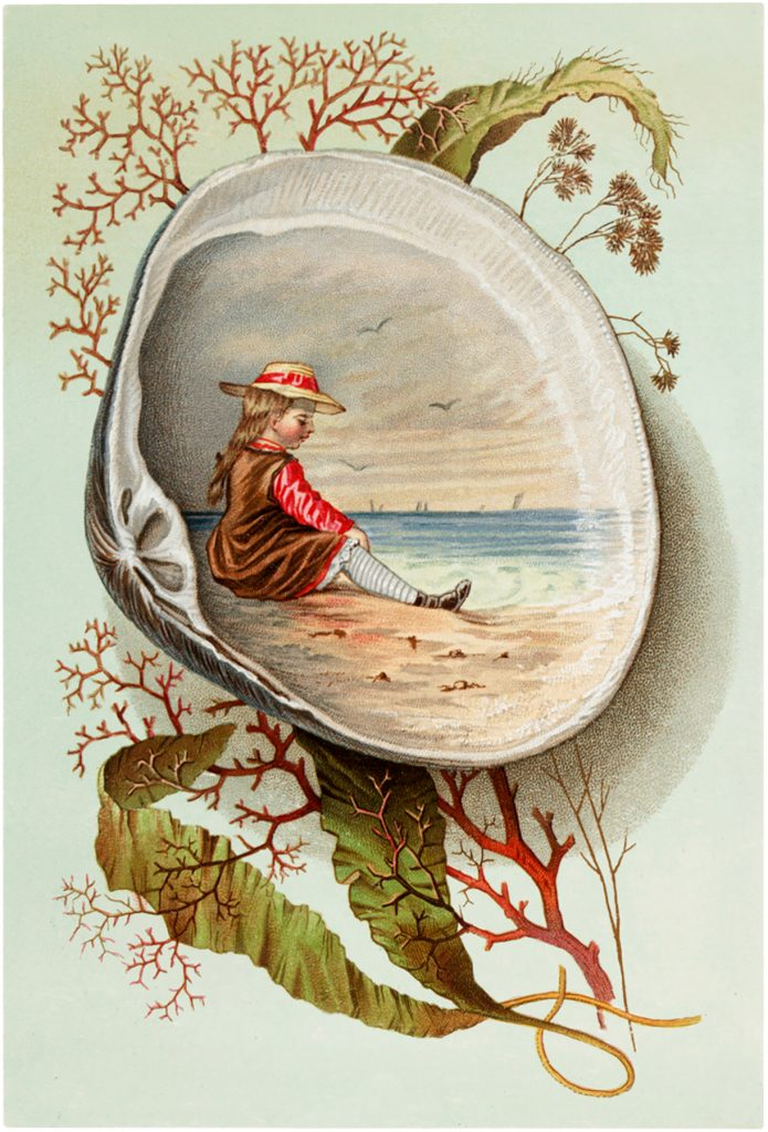 Vintage Clam Shell Scene Children with Seashells Illustrations