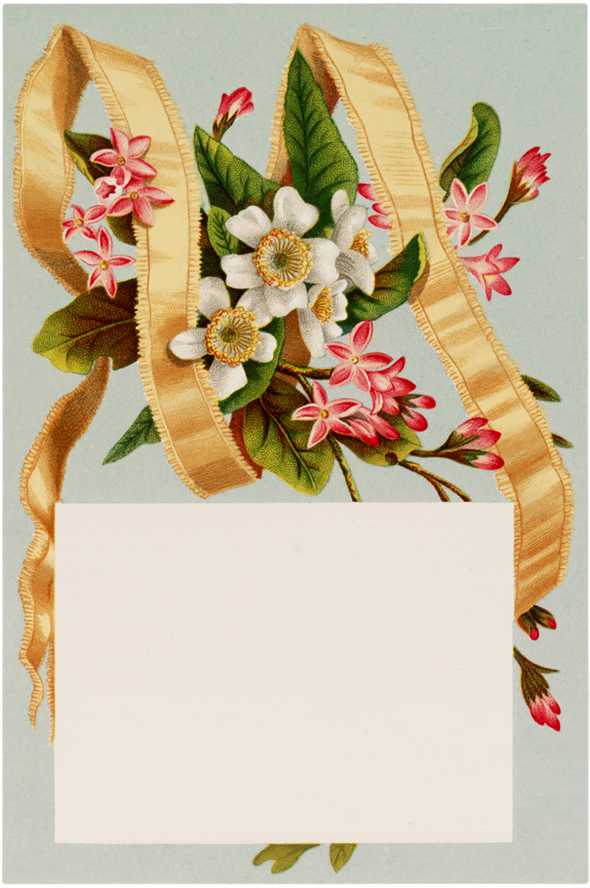 Vintage Flowers with Ribbon Download