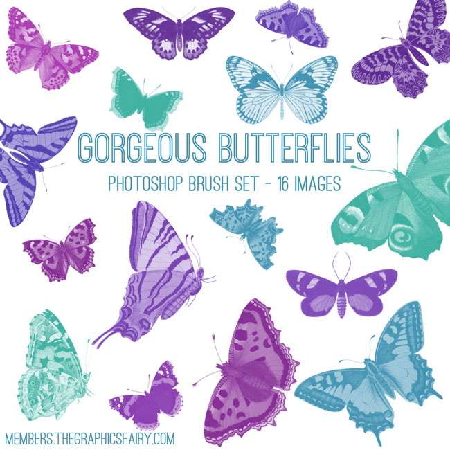 butterflies_brushes_graphicsfairy