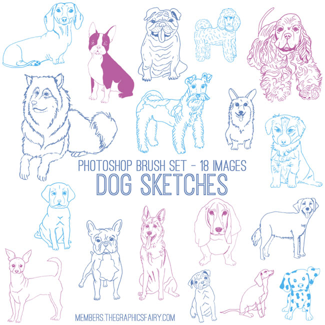 dog_sketches_brushes_graphicsfairy