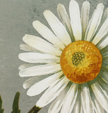 Vintage-Daisy-Download-thm-GraphicsFairy