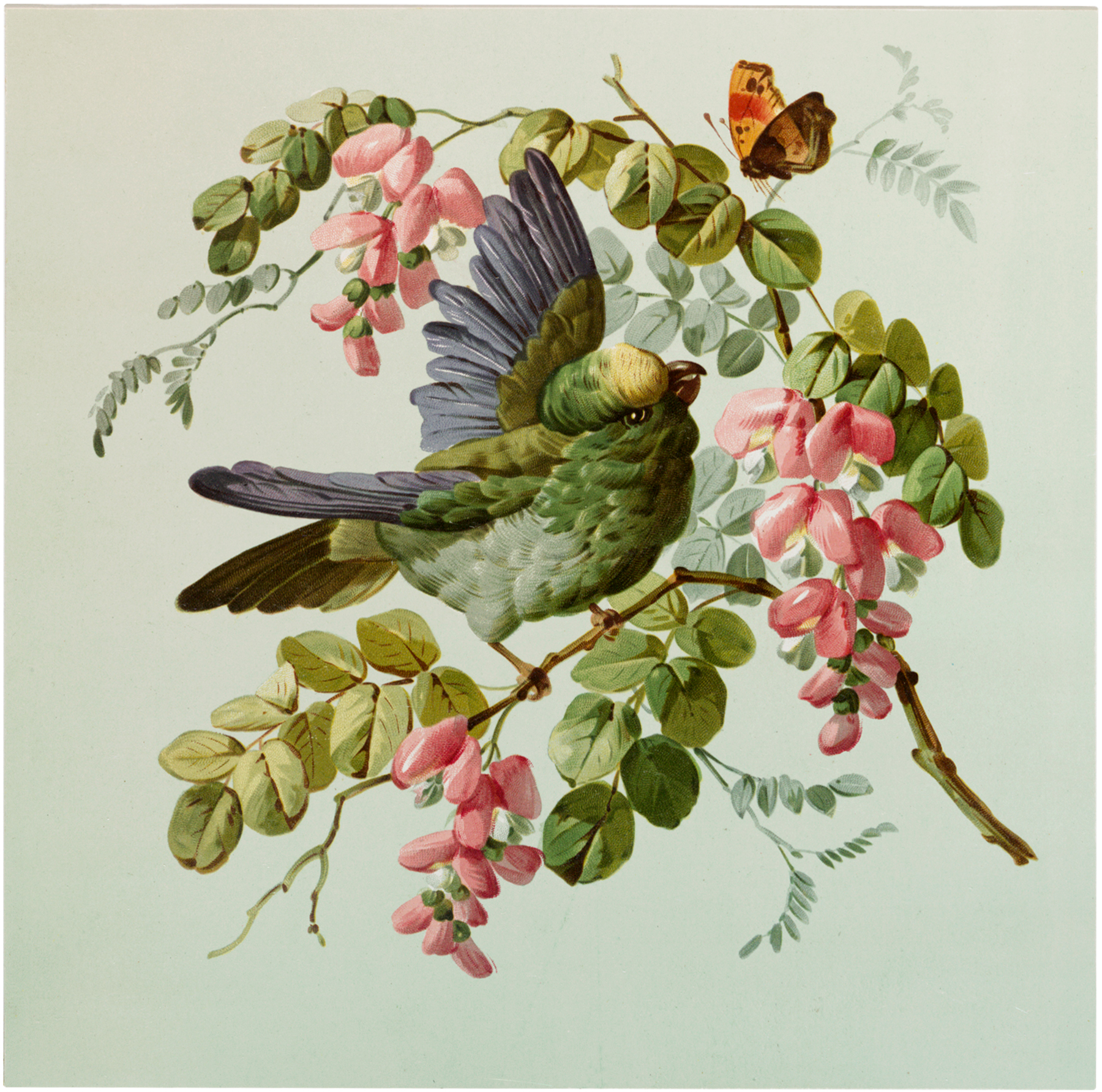 Vintage Fancy Bird with Flowers Image