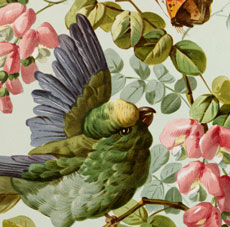 Vintage Fancy Bird with Flowers Image – Beauty!