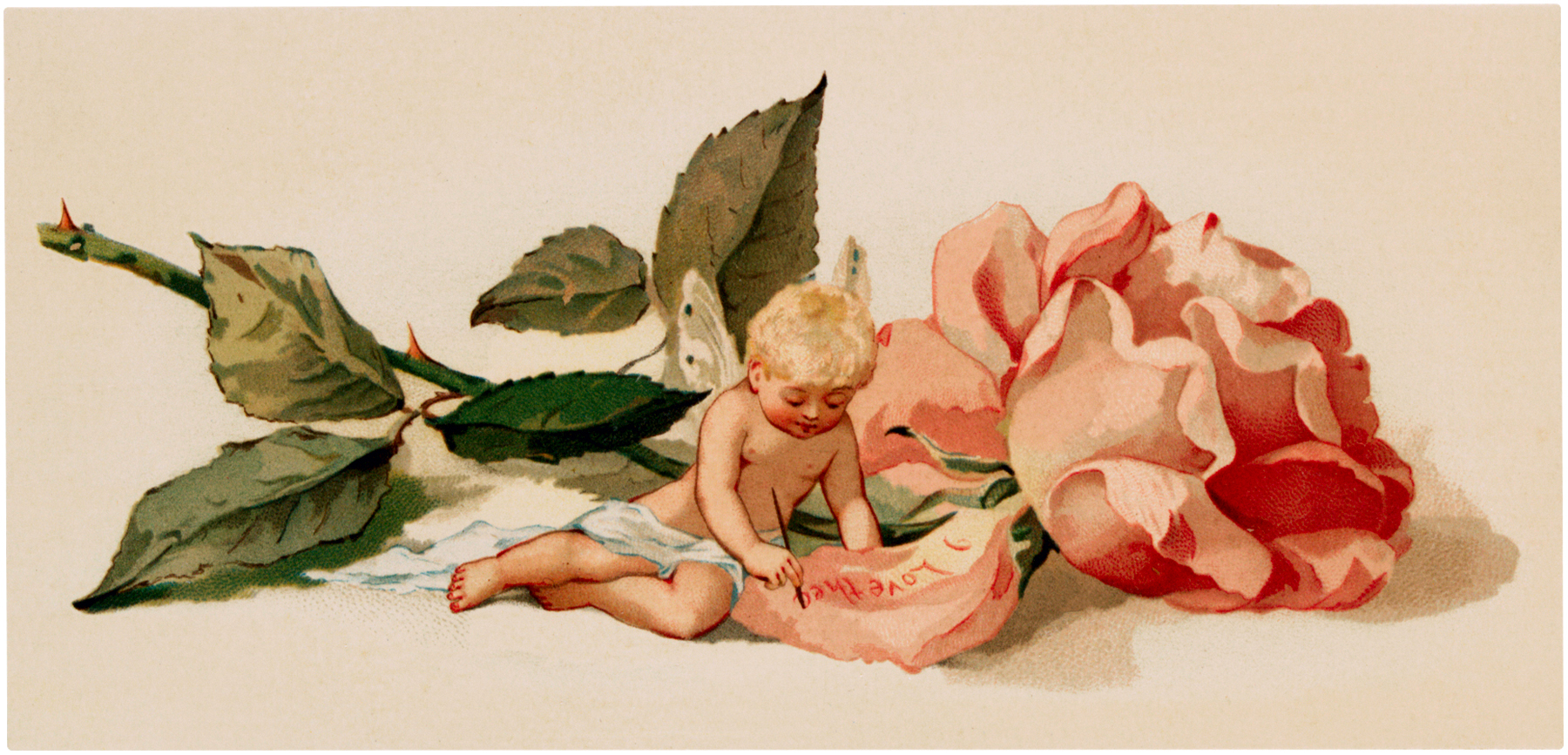 Vintage Rose Fairy Baby Image