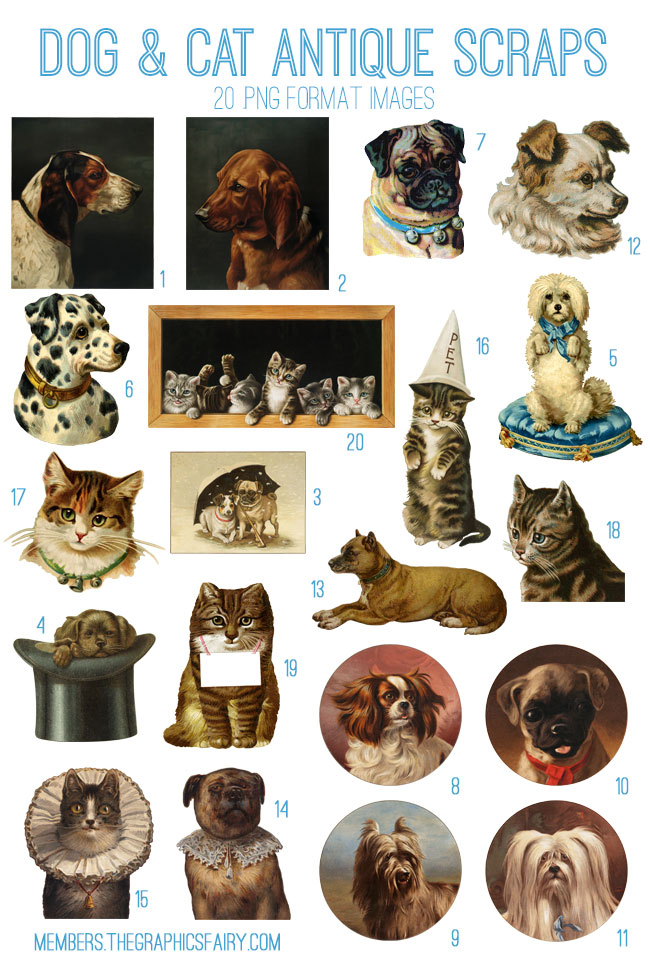 cat_dogs_image_list_graphicsfairy