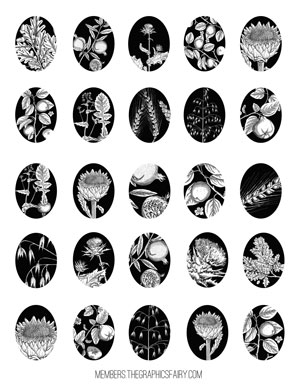 collage_sheet_ovals_bw_graphicsfairy