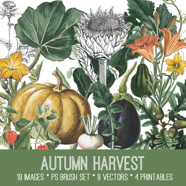 Autumn Harvest Image Kit