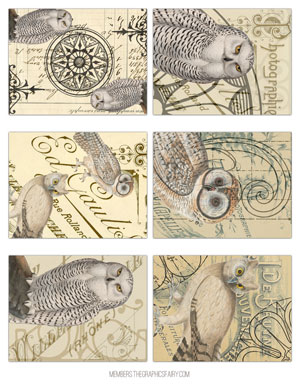 owl_tags_graphicsfairy