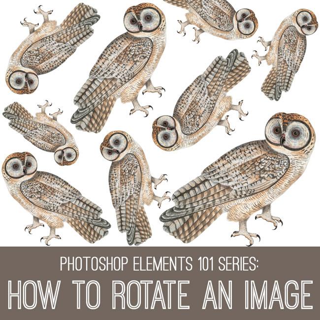 tutorial-650x650_rotate_graphicsfairy