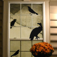 Black Bird decals on Window with Mums