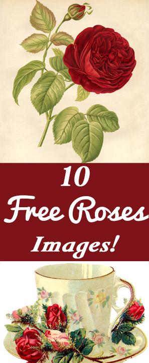10 Free Vintage Roses Images