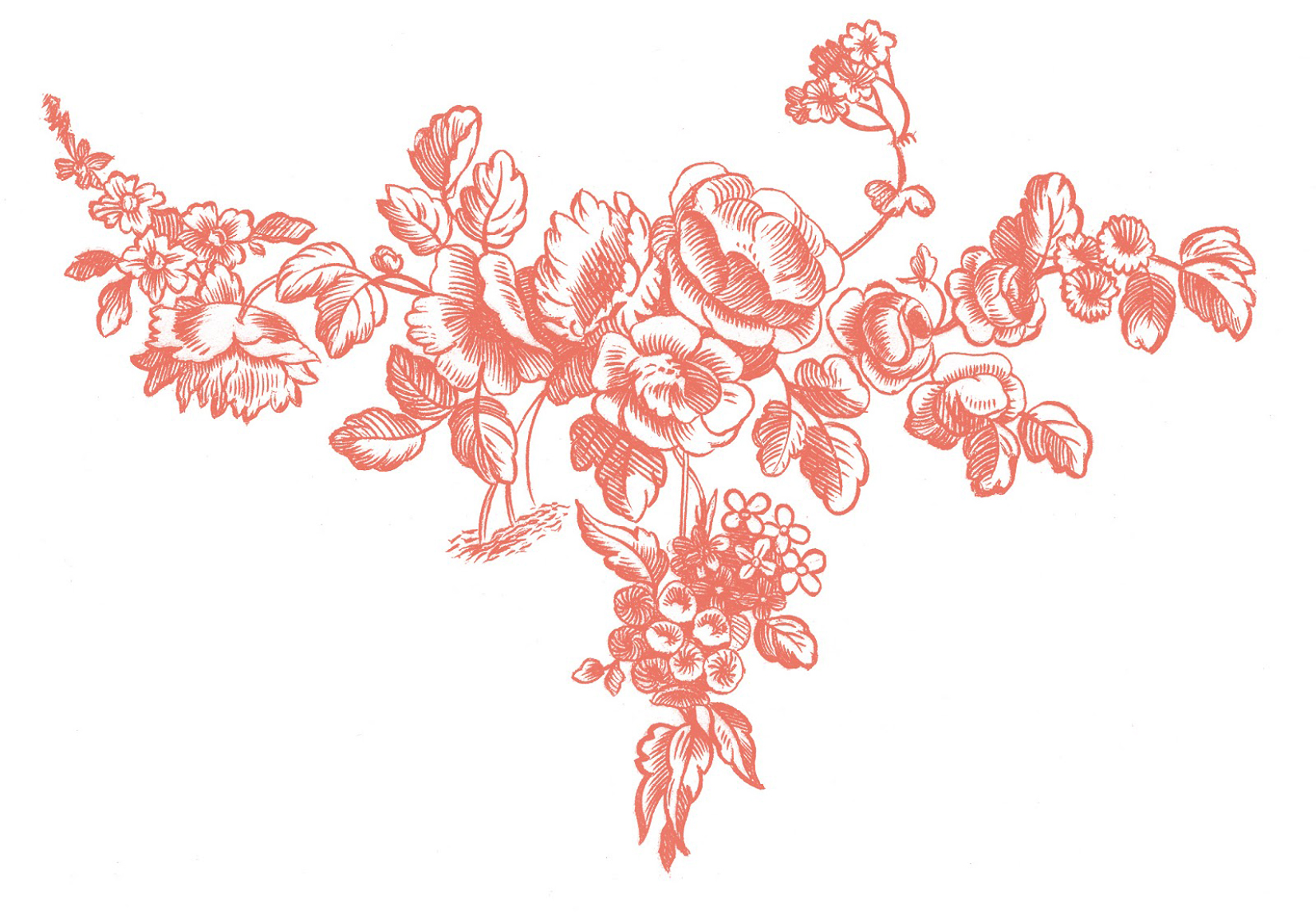 french-roses-engraving-graphicsfairy