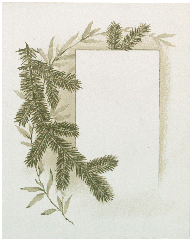 Pine Branch Label Image