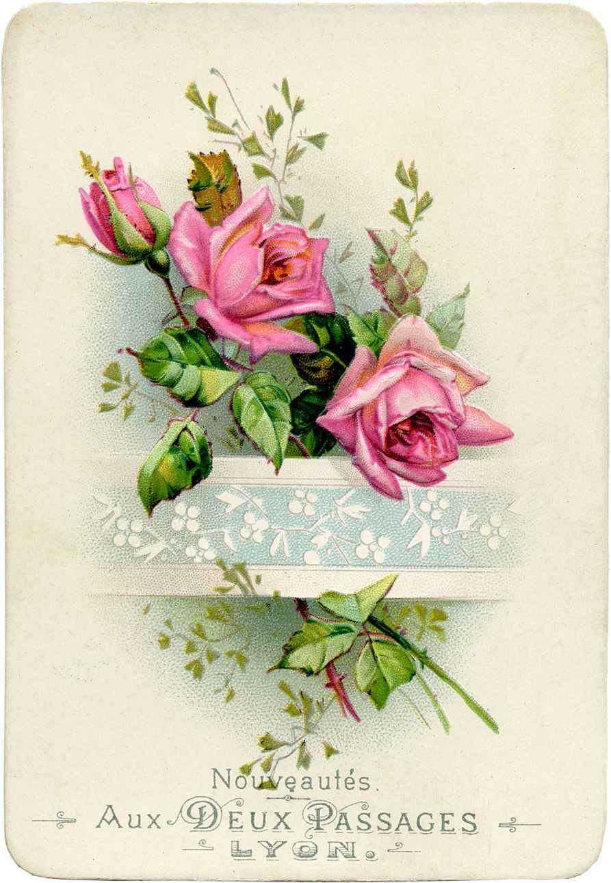 Vintage French Roses Image
